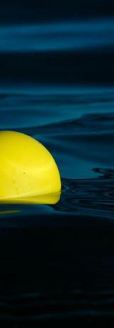 Yellow Ball | Visual Haiku | Miami 2020