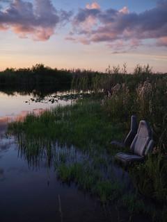 Front Row   Everglades 2020