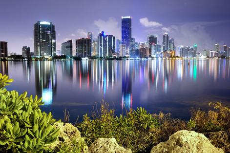 Equanimity | Miami 2015