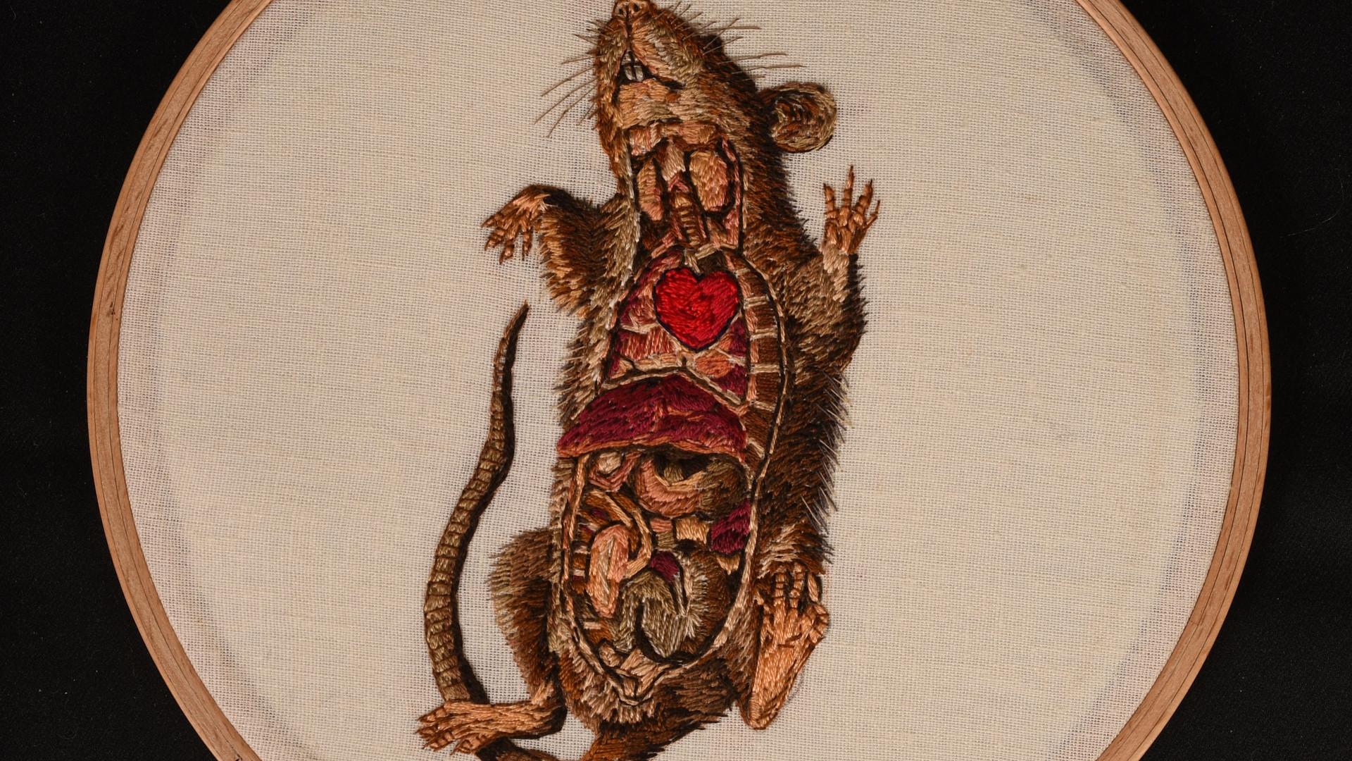 Mr Love Rat
