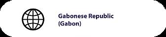 Gov_Gabon.png