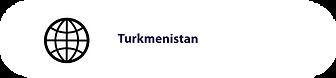 Gov_Turkmenistan.png