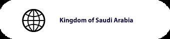 Gov_SaudiArabia.png