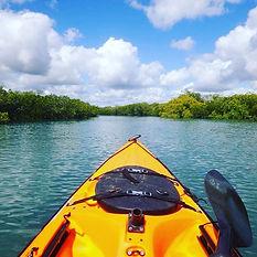 kayaking the creek.jpg