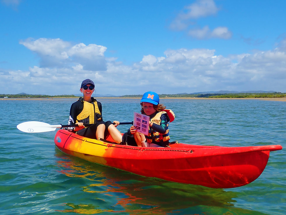 Family friendly kayaking with 1770 Liquid Adventures
