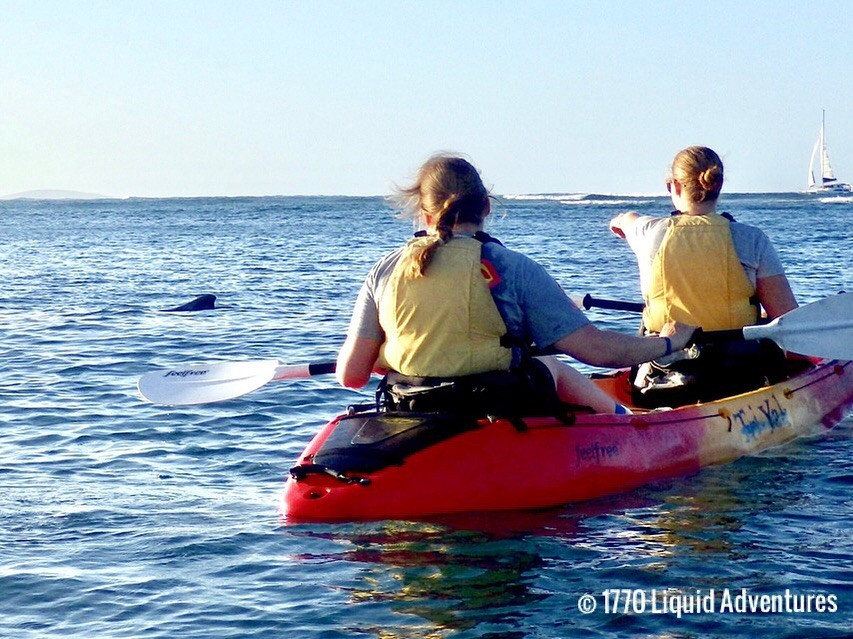 A red double kayak with two females in calm water. They are looking and pointing at a dolphin to their left.