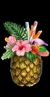 AlohaHawaii_06.png