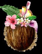 AlohaHawaii_08.png
