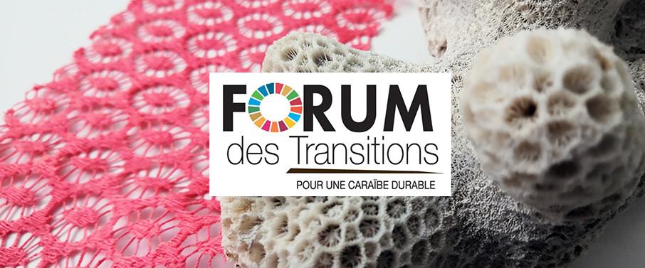 Table ronde : Forum des Transitions – Pour une Caraïbe Durable