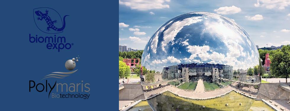 Exposition : BIOMIM'EXPO 2021