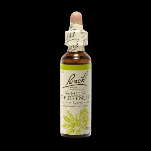 20ML BACH ORIGINALS White Chestnut (Marronnier Blanc)