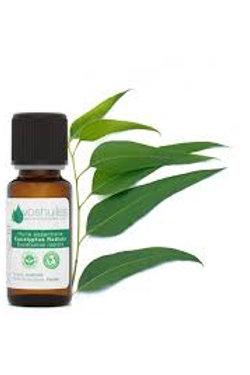 Duo Huile Essentielle d'Eucalyptus Radiata 10ml & Huile Végétale d'Amande douce