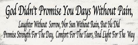 PROMISE4.jpg