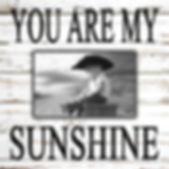 SUNSHINE-1010.jpg