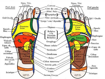 carte pieds