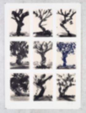 9_trees_WK_19_225_print_8821.jpg