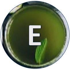 Engaging_Tea.jpg
