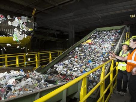 Les bases du recyclage : de la collecte à la transformation
