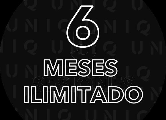 6 Meses de entrenamiento UNICO!
