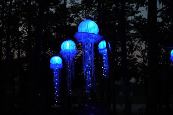 JELLYFISH LIGHTS