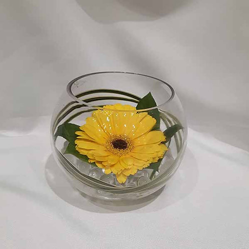Yellow Gerbera Bowl