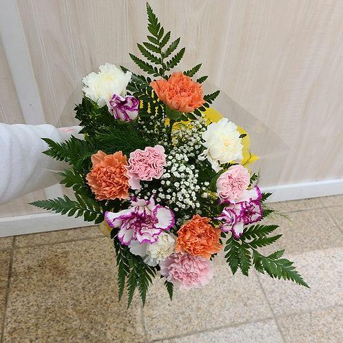 12 Assorted Carnations - NO VASE
