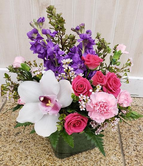 Petite Pinks & Purples