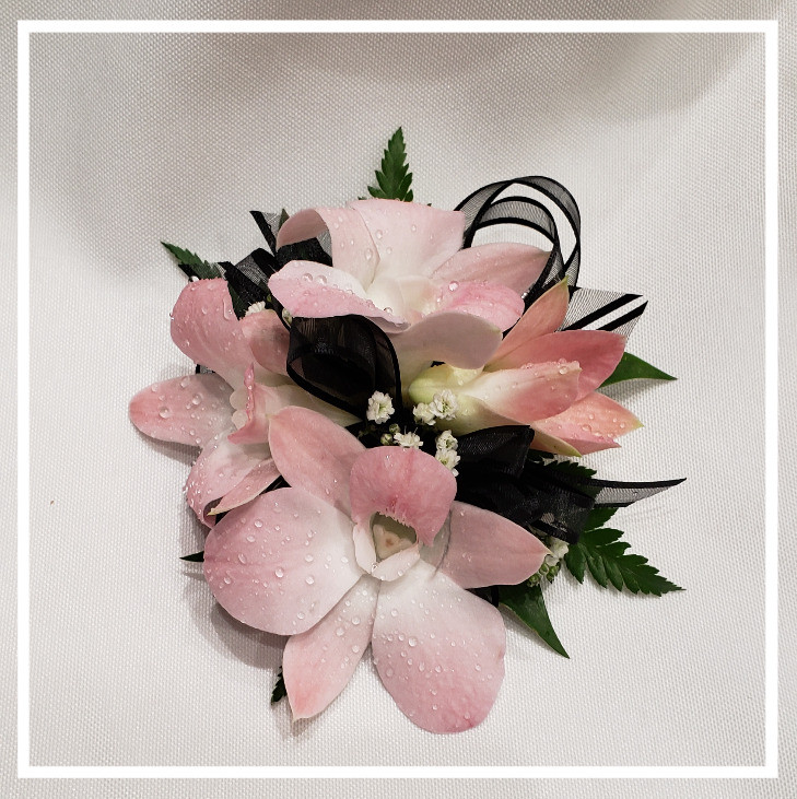 Pink orchid wrist corsage with black ribbon