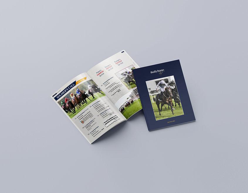 Ballyhane Stud - 2020 Brochure_wide1.jpg