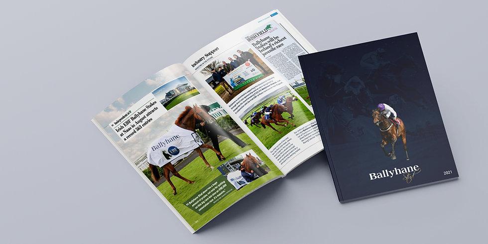 Ballyhane Stud - 2021 Brochure-Twitter_v
