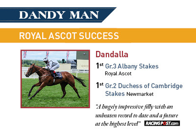 Dandy Man Progeny Success