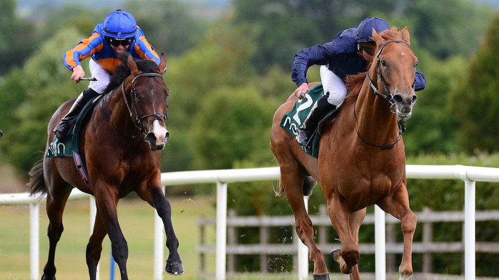 Chief Little Hawk WINS the inaugural Irish EBF Ballyhane Stakes at Naas.