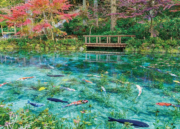 日本風景 - 無名池塘 500塊 (38×53cm)