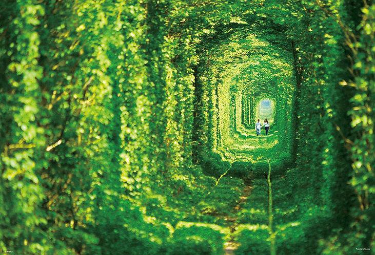 烏克蘭風景 - 愛的隧道 1000塊 (49×72cm)
