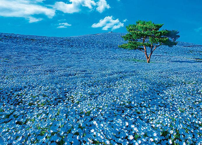 日本風景 - 茨城山丘 600塊 (38×53cm)