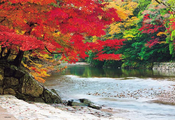 日本風景 - 五十鈴川之紅葉 300塊 (26×38cm)