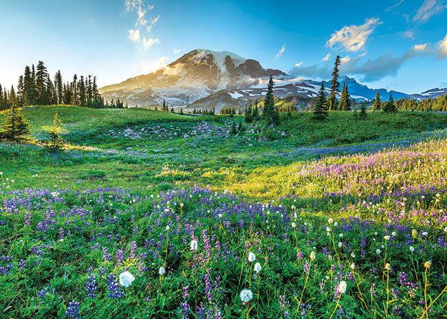美國風景 - 遙遠的雷尼爾山 500塊 (38×53cm)
