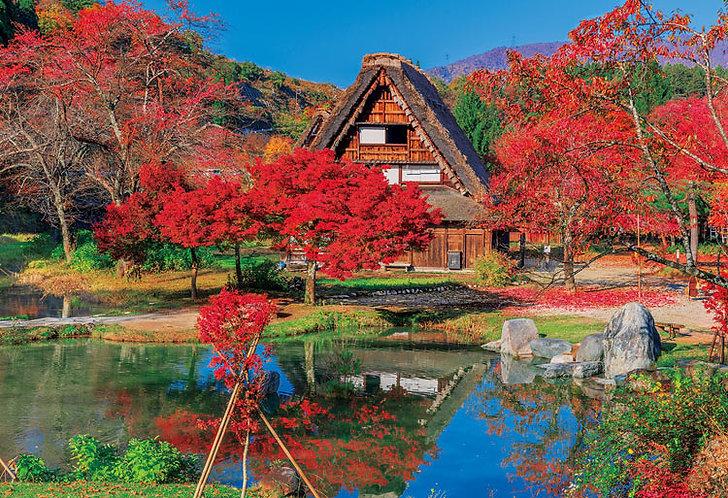 日本風景 - 秋色之白川鄉 300塊 (26×38cm)