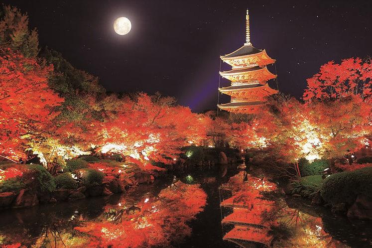 日本風景 - 秋之五重塔 1000塊 (50×75cm)