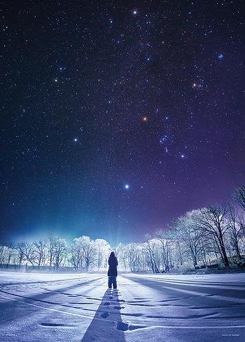 日本風景 - 冬之鑽 500塊 (38×53cm)