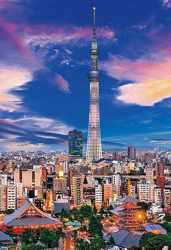 日本風景 - 東京暮光之城 300塊 (26×38cm)