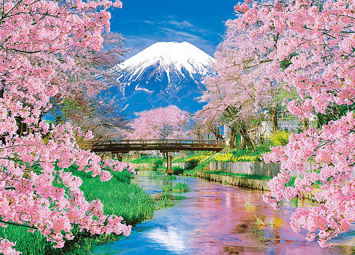 日本風景 - 富士和春天 600塊 (38×53cm)