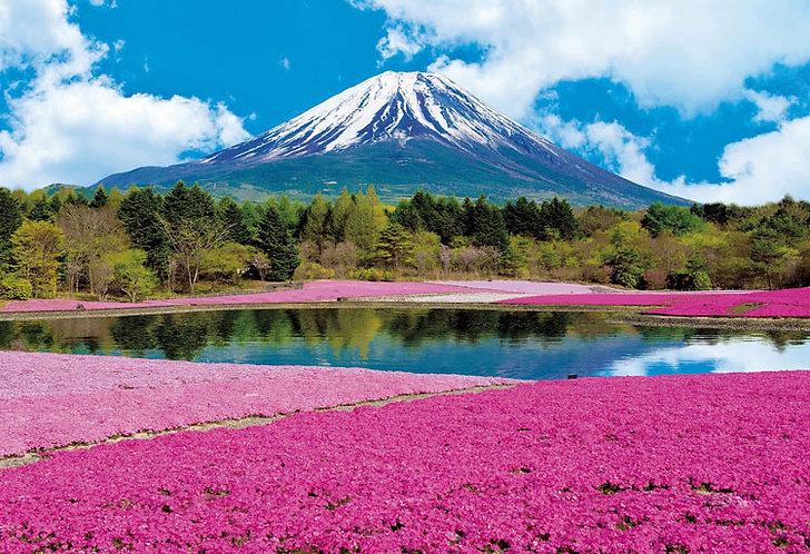 (迷你尺寸) 日本風景 - 粉紅富士1053塊 (26×38cm)