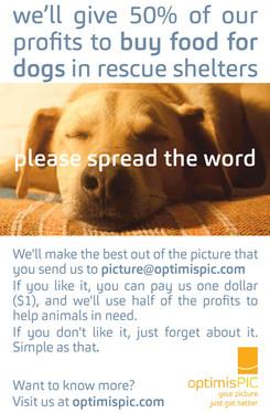 optimisPIC - spread the word.jpg