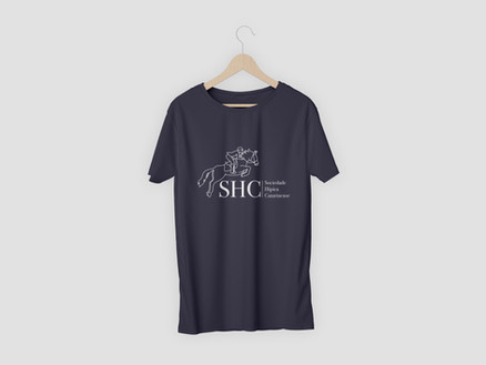 SHC Hanging T-Shirt gray II.jpg