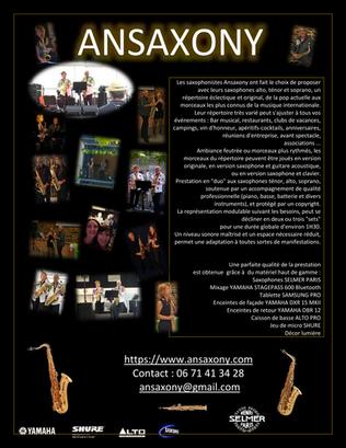 ANSAXONY flyer 2020.png