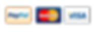 visa-mastercard-paypal-logo.png