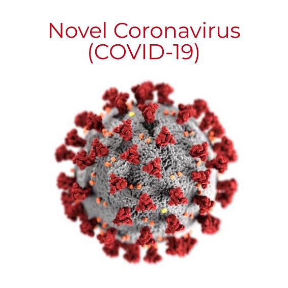 COVID 19.jpg.png