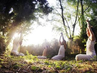 Yoga ile kariyerinizi farklılaştıracak bir yolculuk mümkün