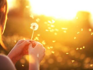 Başkalarının kendilerini iyileştirmelerine olanak sağlarken dengeyi korumanız için on iki paradigma